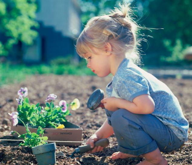 дети в огороде
